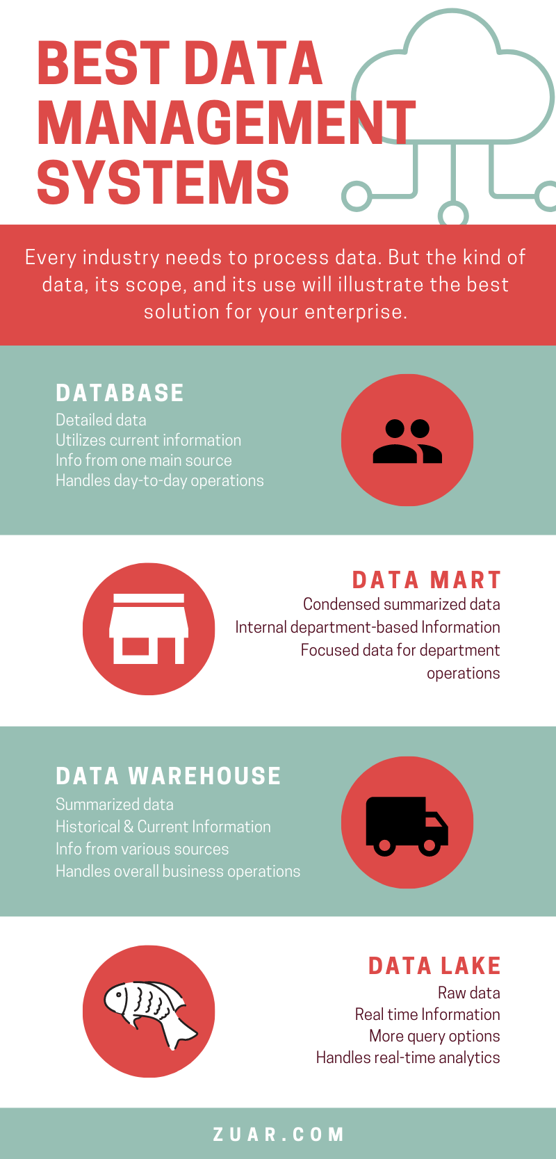 Best Data Management Systems Infographic
